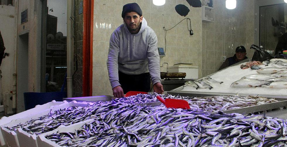 """Karadenizli balıkçılara """"yerli hamsi"""" sürprizi"""