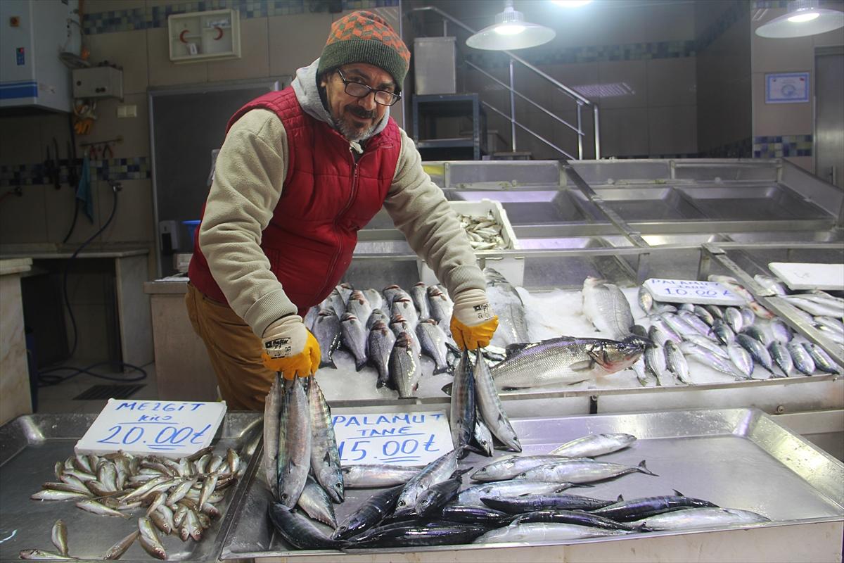 Karadeniz'de balıkçılara palamut sürprizi
