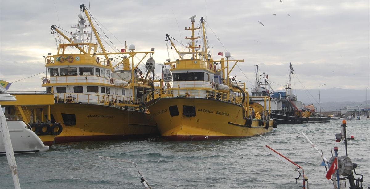Balıkçılar yüzde 80'lik düşüşün araştırılması istiyor