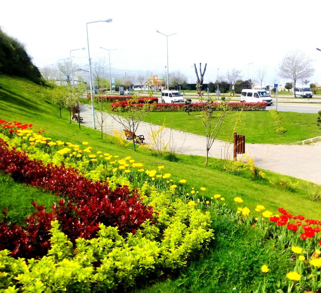 Trabzon çiçek bahçesi oldu