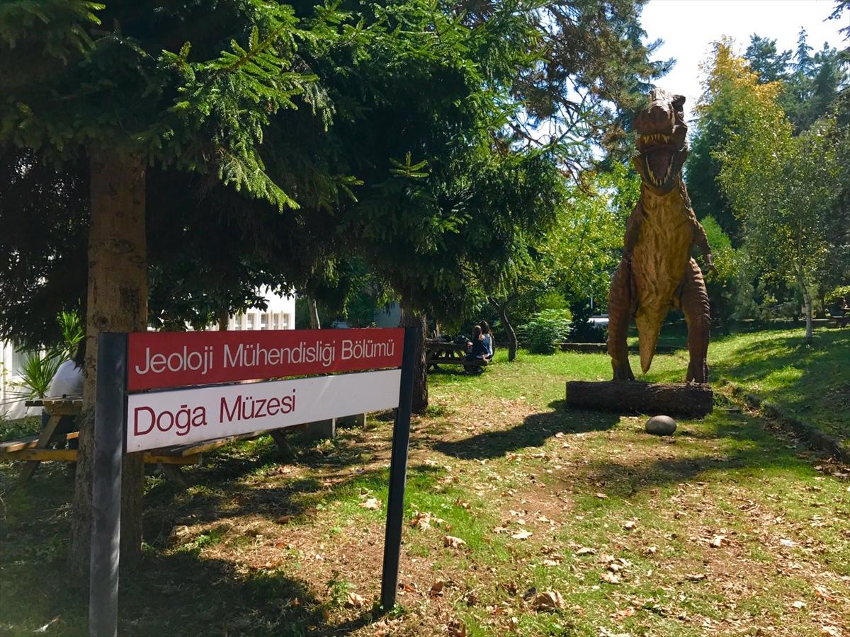 Trabzon'da Doğa Müzesi oluşturulacak