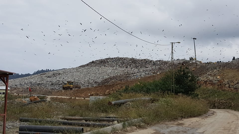 Turizm cenneti Trabzon çöp kokuyor!