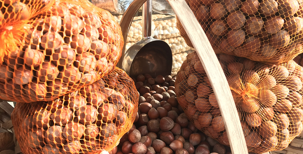 Fındık ihracatının yüzde 38'i Trabzon'dan