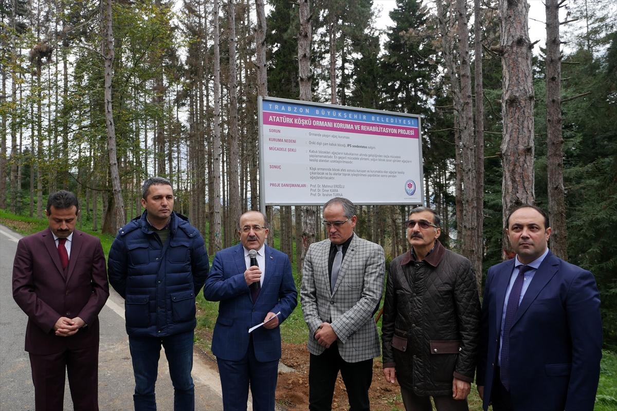 Atatürk Köşkü Ormanı'nda 1 milyondan fazla zararlı böcek tespit edildi