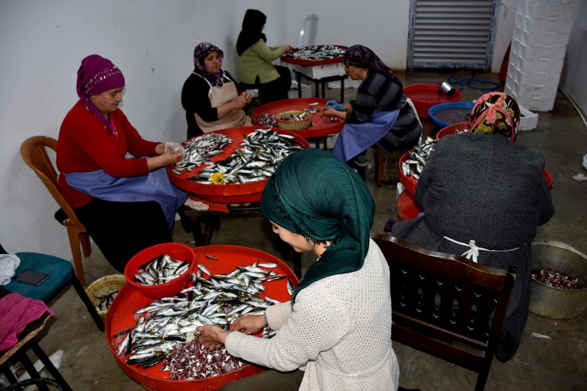 Trabzon'da balıkhane ihtiyaç sahibi kadınlara ekmek kapısı oldu