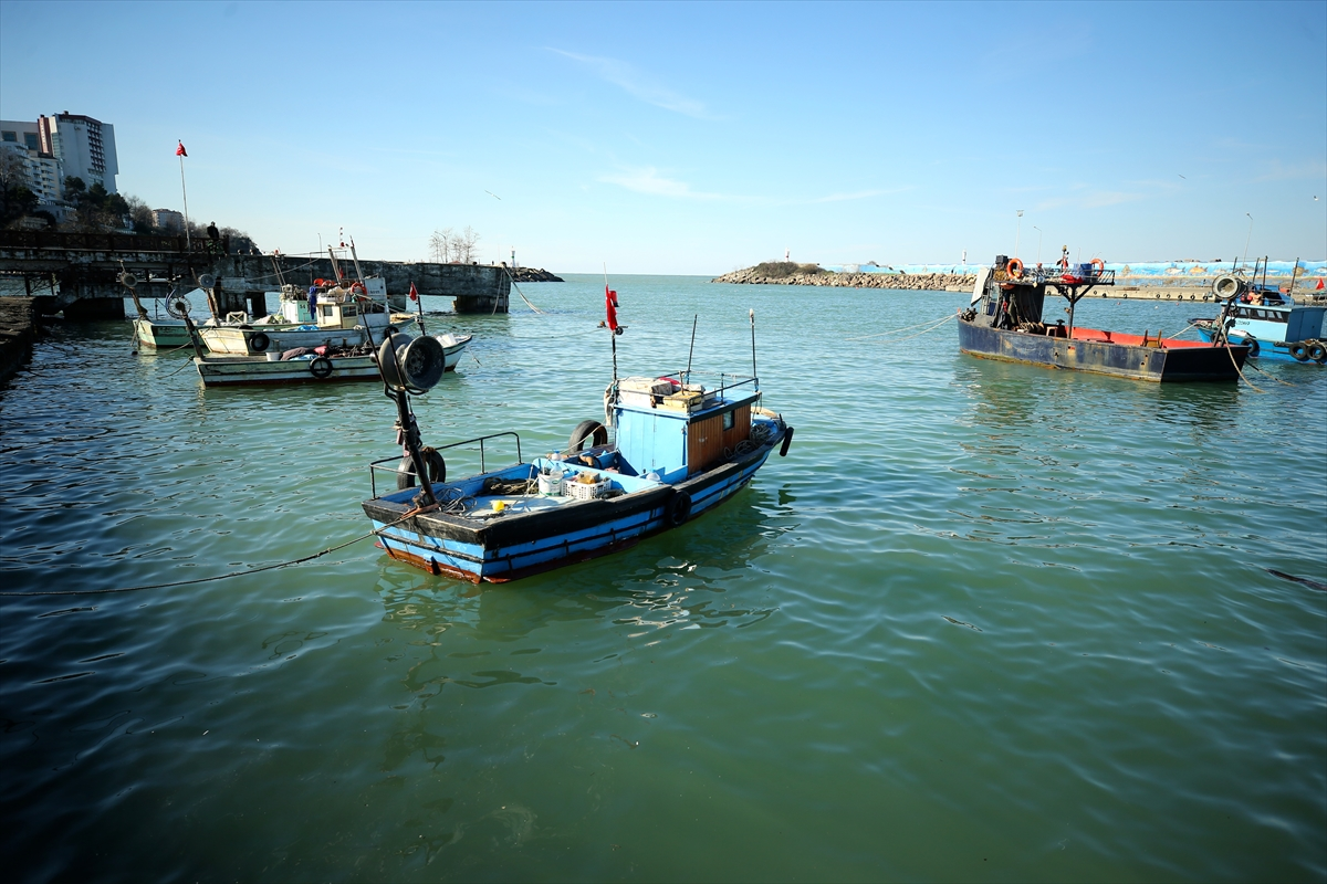 Balık rotasını Doğu Karadeniz'e çevirdi