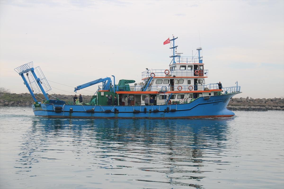 Türk bilim insanları Gürcistan sularındaki hamsi varlığını araştıracak