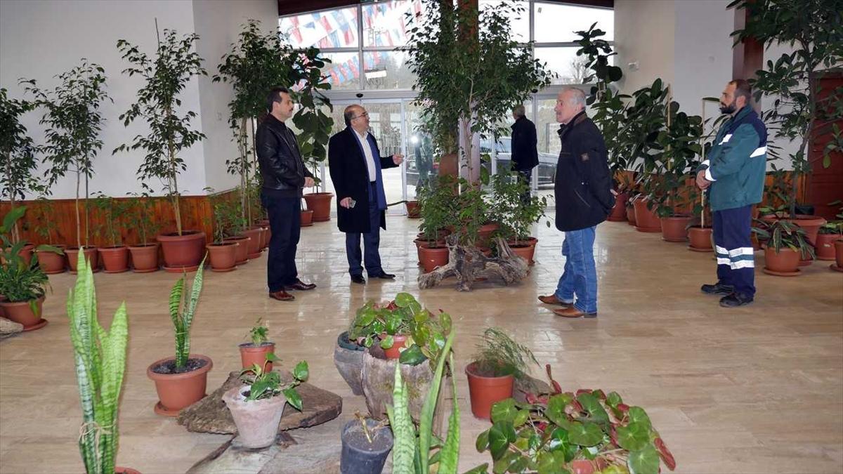 """""""Trabzon Botanik""""te bitki kütüphanesi oluşturuldu"""