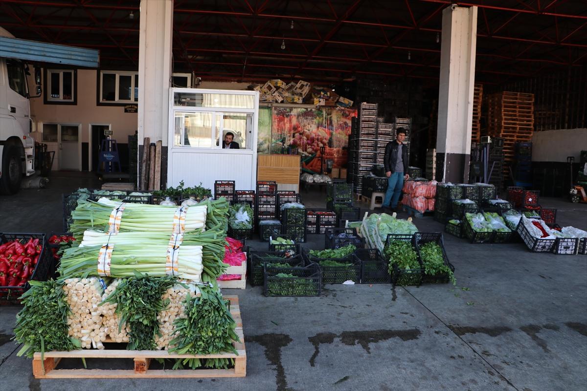 Yaş meyve sebze ihracatı 10 ayda 1,5 milyar dolar kazandırdı