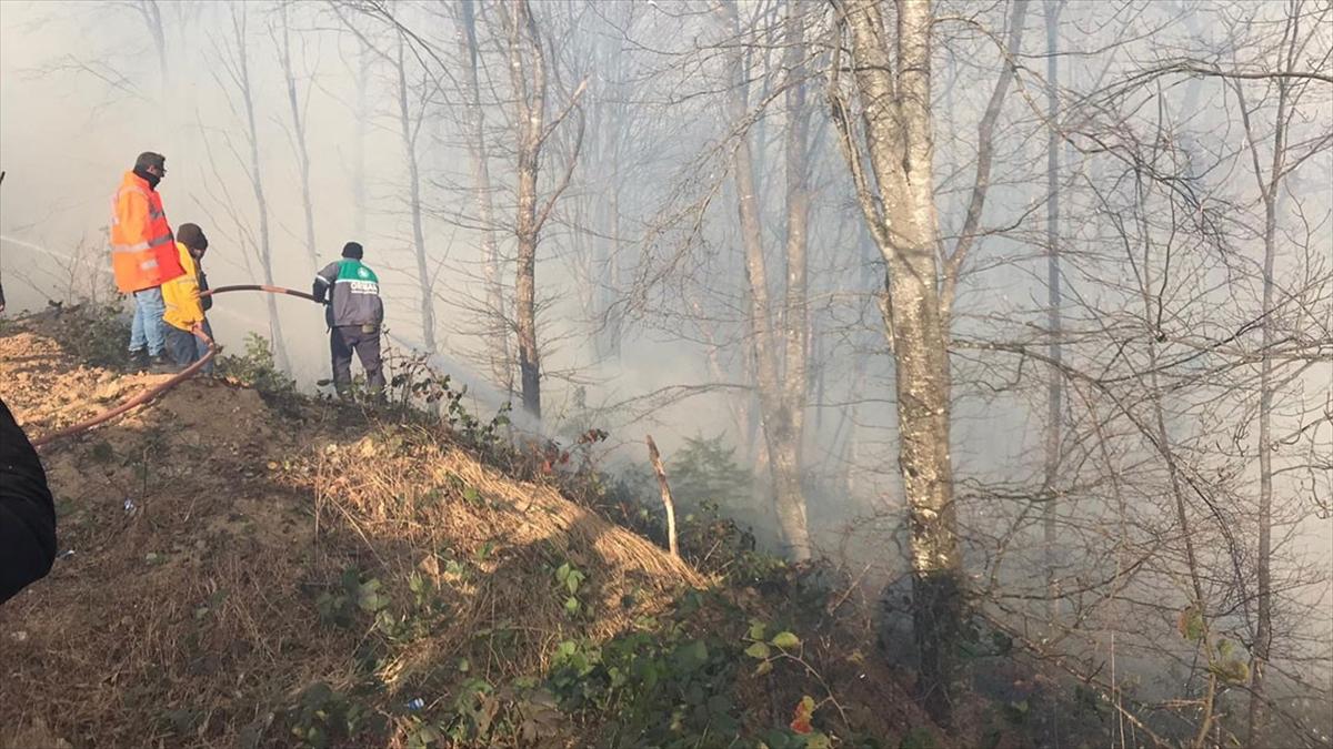 Karadeniz Bölgesi'ndeki tüm yangınlar kontrol altına alındı