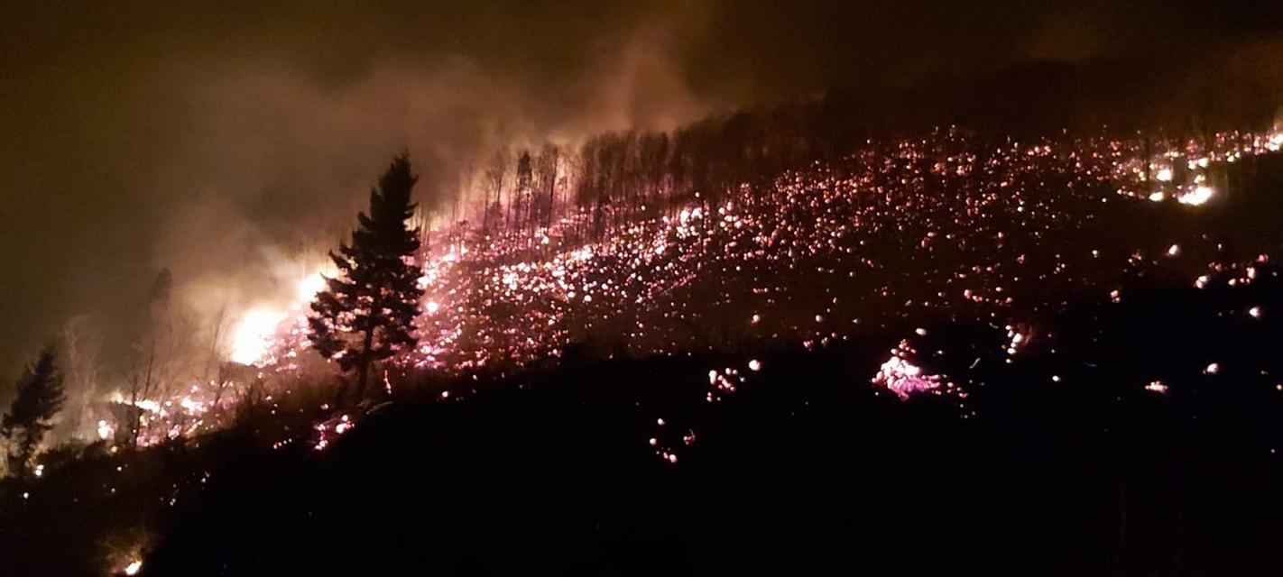 Arsin'de orman yangını durdurulamıyor