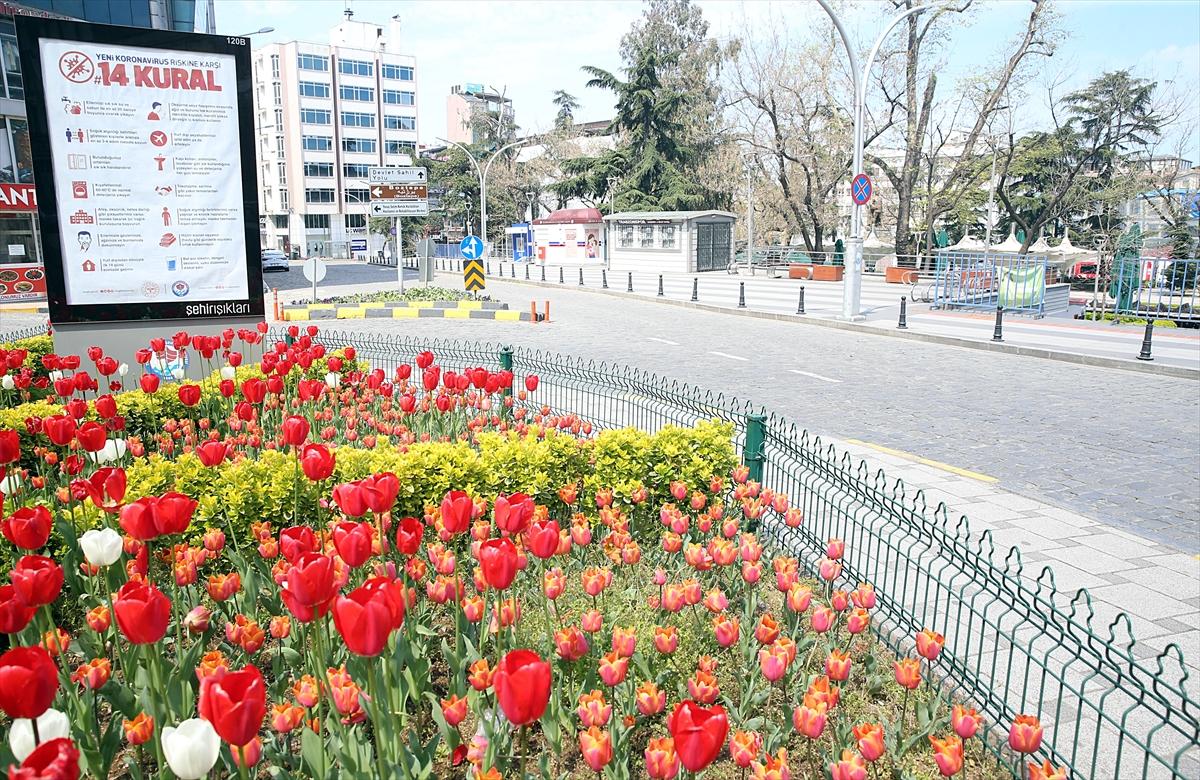 Trabzon'da sokağa çıkma kısıtlaması