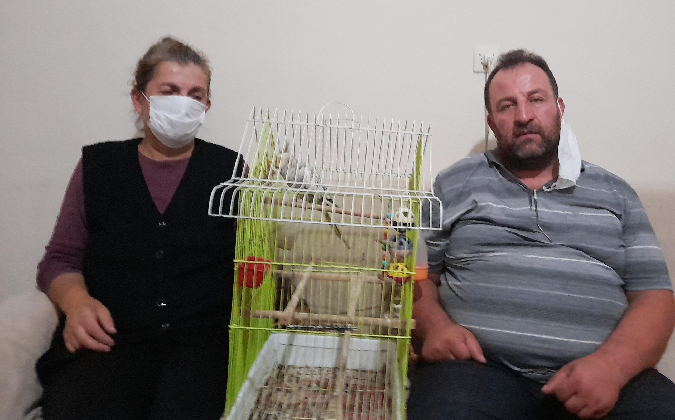 Kayıp papağanını getirene bin lira ödül verecek