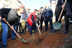Trabzon'da kan bağışçılarının ismi hatıra ormanındaki fidanlarda yaşayacak