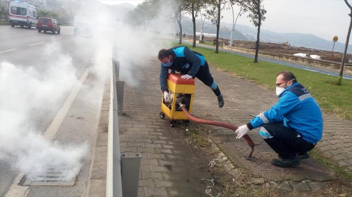 Trabzon Büyükşehir Belediyesinin vektörle mücadele çalışmaları sürüyor