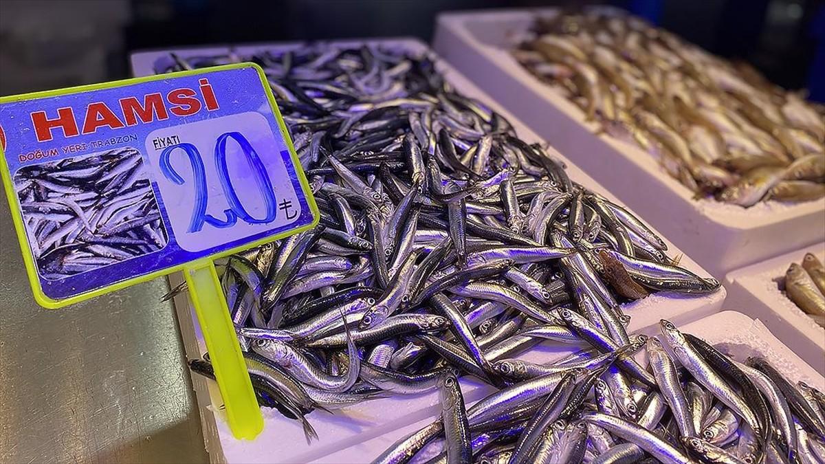 Trabzon'da taze hamsinin kilogramı 20-30 liradan satılıyor