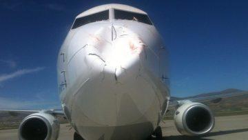 Trabzon-Ankara seferini yapan uçak, kuş sürüsünün çarpması üzerine havalimanına geri döndü
