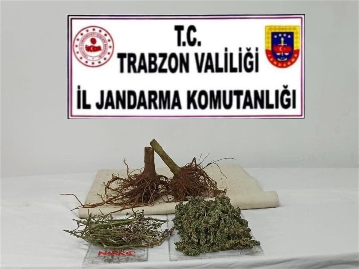 Trabzon'da uyuşturucu operasyonunda 1 şüpheli yakalandı