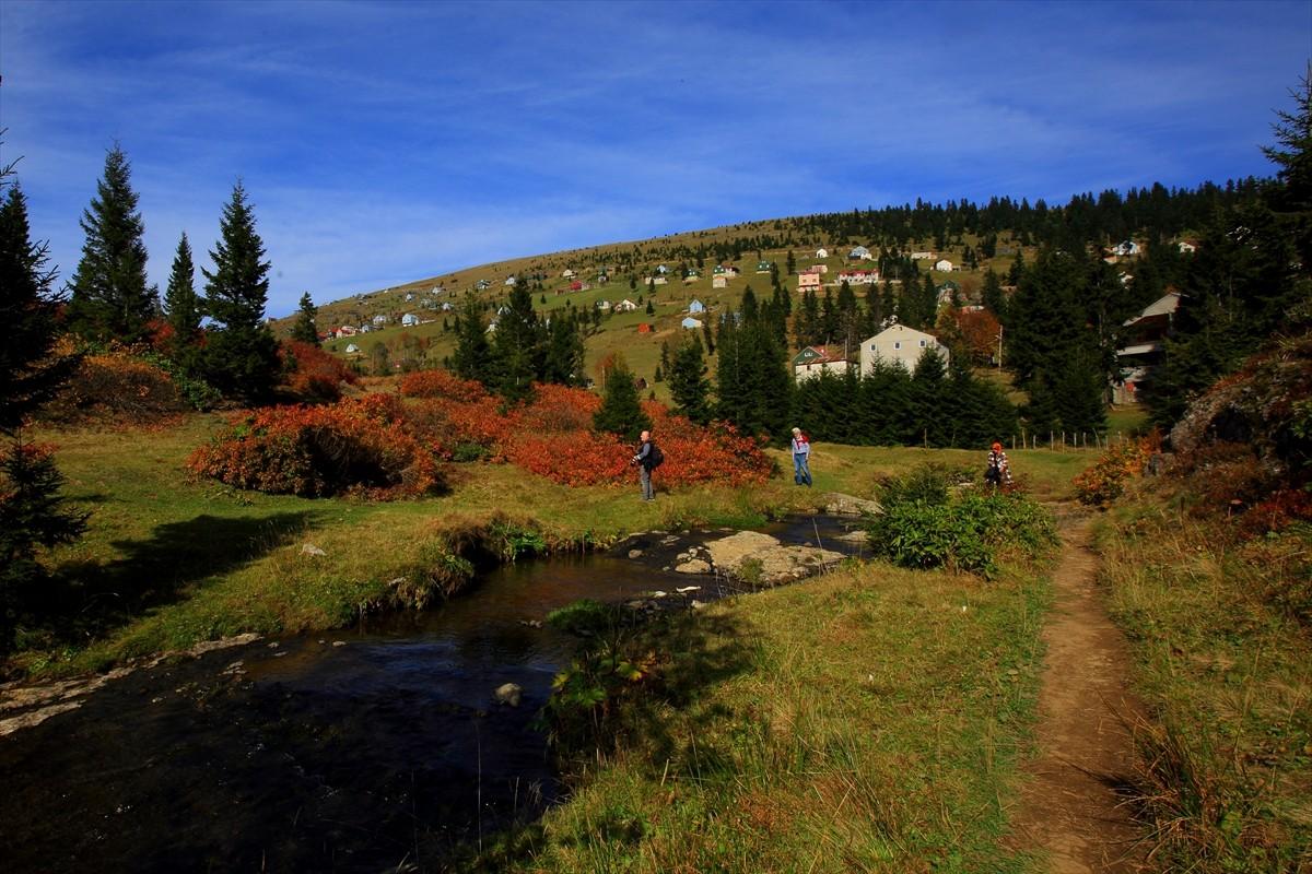 Sis Dağı'nda sonbahar renkleri görsel şölen oluşturuyor
